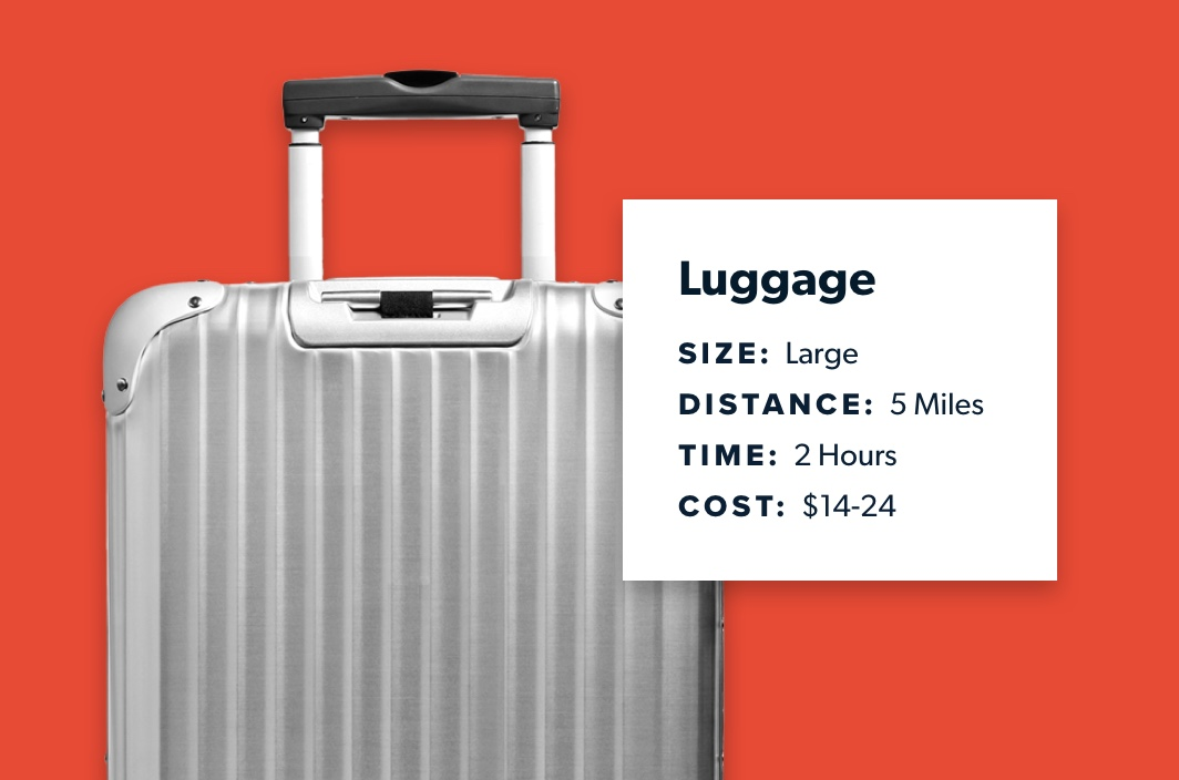same day delivery for airline luggage